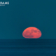 Buoy Moonrise
