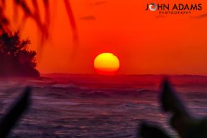 Shacks Sunset