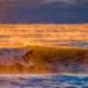 Smokey Sunrise Surf