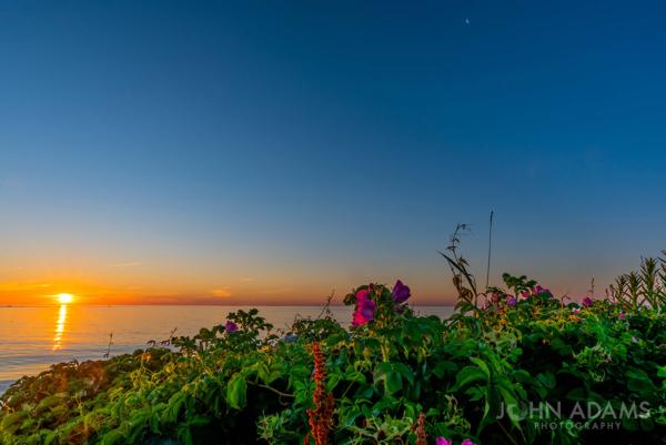 Sun Chasing Moon